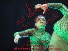 Galerie BD1372-0490.jpg anzeigen.