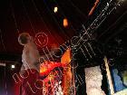 Galerie VD212-0490.jpg anzeigen.
