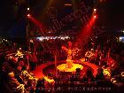 Galerie 2013-05-29 PD119 Cirque Bouffon Nandu Koeln Sepia anzeigen.