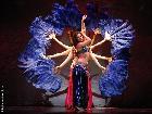 Galerie Belly Dance Super Stars BD462-1303.JPG anzeigen.